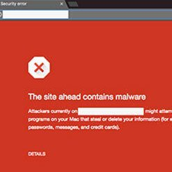 Inadequate WordPress Security can cause malware,