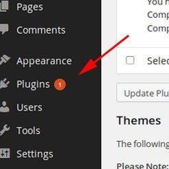 Update Plugins. Maximise WordPress Security
