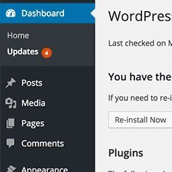 Update core system. Maximise WordPress Security